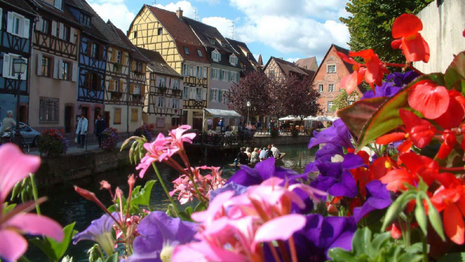 All about Alsace